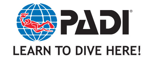 PADI learn to dive